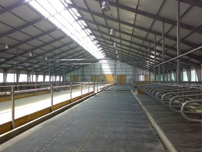 Полимерные полы в строительстве ферм