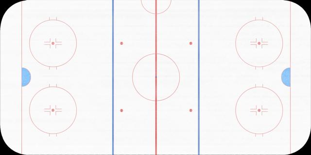 Разметка хоккейной площадки